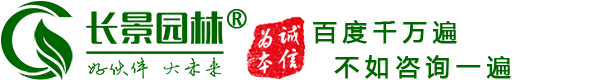 澳门永利平台网址苗木_园林澳门永利平台网址苗木价格_苗木报价-江苏沭阳长景园林苗木场