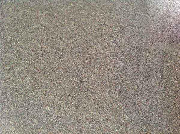 果岭草种子图片