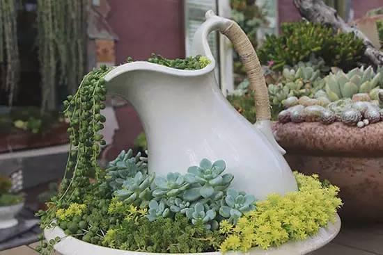 8款别致花卉庭院,都成妖精了!