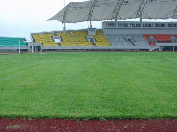 标准足球场草坪厚度是多少厘米?