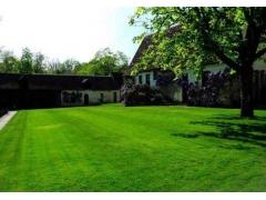 别墅庭院子家用天然草坪