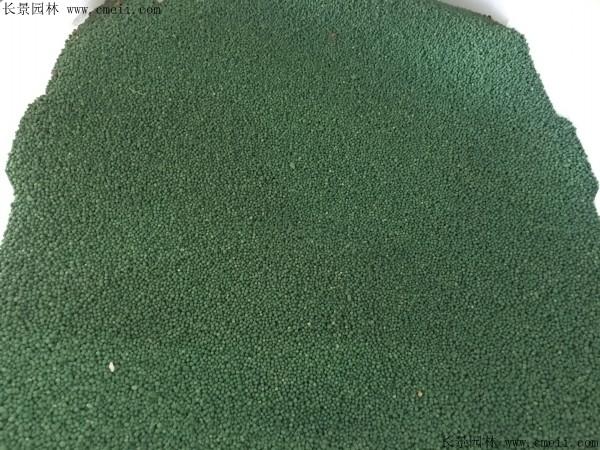 马蹄金种子图片