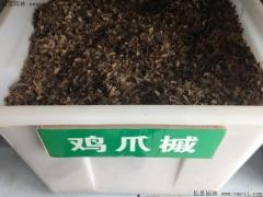 鸡爪槭种子