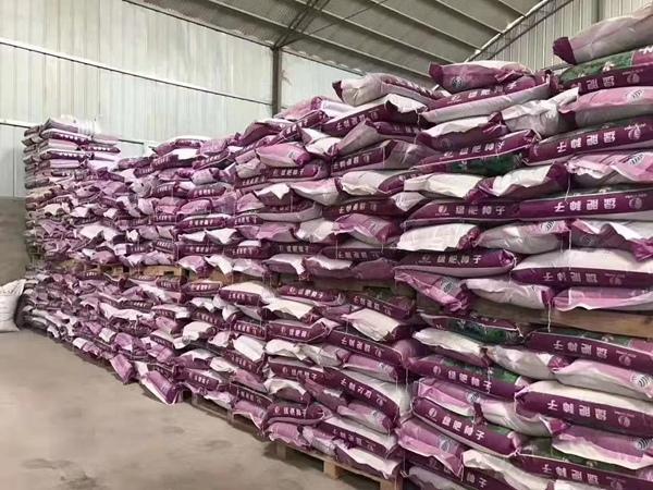 紫云英种子图片