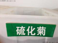 硫化菊种子