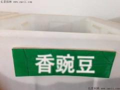 香豌豆种子