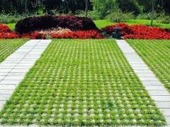 草坪砖植草绿化效果