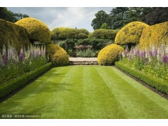 花园草坪_庭院家庭_别墅私家园林